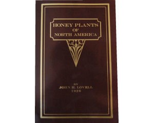 Honey Plants Of North America