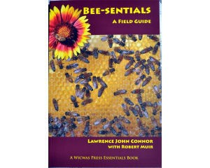 Bee-Sentials