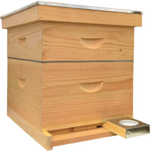 Assembled Deluxe Cypress Hive