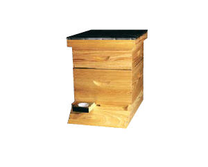 Cypress Deluxe Standard Hive