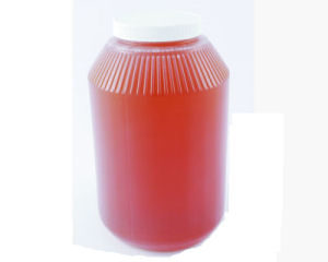 1 Gallon Plastic Round with Lid – 89RM