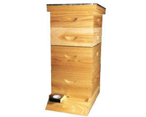 Cypress Super Deluxe Starter Hive